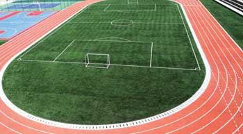 Role of Great Sports in the Sports Sector