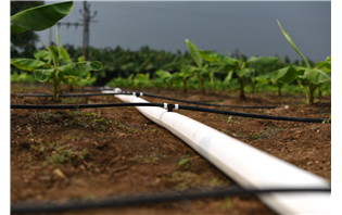 Netafim India launches FlexNet Piping for Drip Irrigation Systems