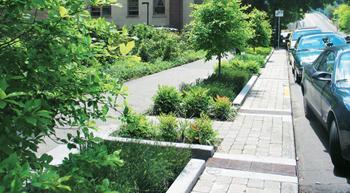 Greening infrastructure for healthier cities